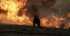 Ιστορικό χαμηλό για την Κρήτη! Φέτος η χρονιά με τη λιγότερη καμένη γη της 20ετίας