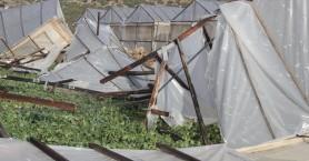 Τεράστιες οι καταστροφές στα θερμοκήπια - Αυτοψία σε Κίσσαμο και Σέλινο