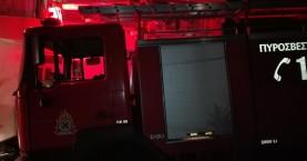 Χανιά: Φωτιά σε δασική περιοχή στο Βαρύπετρο (φωτο)
