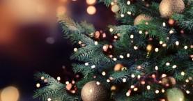 Ανάβουν το χριστουγεννιάτικο δέντρο στο Γεράνι