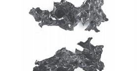 Η θερμοκρασία από την έκρηξη του Βεζούβιου μετέτρεψε τον εγκέφαλο ενός θύματος σε…γυαλί