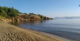 Εθελοντική δράση καθαρισμού παραλίας της Χρυσής Ακτής