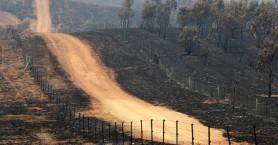 Φωτιές στην Αυστραλία: Κάηκαν χιλιάδες σπίτια, σκοτώθηκαν ένα δισεκατομμύριο ζώα