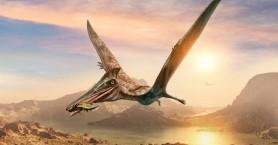 Kαλαμάρι με ένα δόντι πτερόσαυρου αποκαλύπτει πώς ήταν το κυνήγι πριν από 150 εκατ. χρόνια