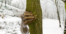 """Μεταλλικό χέρι """"πιέζει"""" κορμό δέντρου για 40 χρόνια!"""