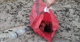 Ψυχές στα σκουπίδια