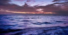 Επικίνδυνα βακτήρια στη Βαλτική Θάλασσα προκαλούν θανατηφόρες λοιμώξεις δέρματος