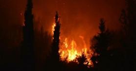 Οδηγίες προστασίας από δασικές πυρκαγιές