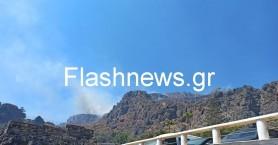 Ρέθυμνο: Υπό έλεγχο η μεγάλη πυρκαγιά στο Δαμνόνι - Παραμένει στο σημείο η πυροσβεστική