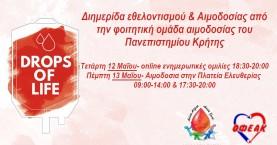 Την Πέμπτη η αιμοδοσία των φοιτητών του Πανεπιστημίου Κρήτης στην πλατεία Ελευθερίας