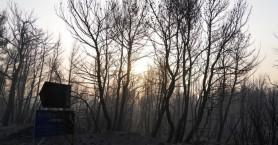 Βαρυμπόμπη: Η τραγωδία τριών φίλων που εγκλωβίστηκαν στις φλόγες και ακόμα χαροπαλεύουν