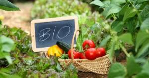 Άνοιξαν οι αιτήσεις για τις Βιολογικές Καλλιέργειες