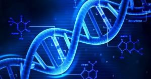 Επιστήμονες μετέτρεψαν αρσενικά ποντίκια σε θηλυκά «παίζοντας» με το DNA