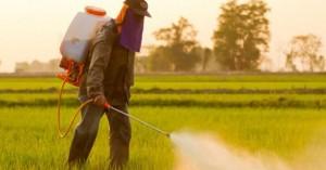 Οδηγίες για τη χρήση γεωργικών φαρμάκων στα Χανιά