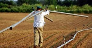Άνοιξε η ηλεκτρονική υπηρεσία για την έκδοση βεβαίωσης Επαγγελματία Αγρότη