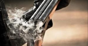 Θεσπρωτία: Καταγγελίες για νεκρά άλογα από πυροβολισμούς με κυνηγετικό όπλο