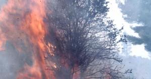 Συναγερμός από φωτιά που προκλήθηκε λόγω κεραυνού!