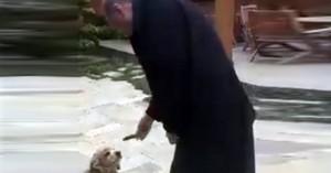 Ο Ερντογάν δίνει «σόου» και ένα αγγούρι σε σκυλί