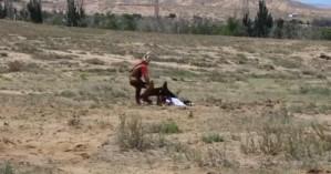 Αετός επιτέθηκε σε κορίτσι κατά τη διάρκεια show (βίντεο)