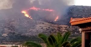 Υπό μερικό έλεγχο η φωτιά στα Φαλάσαρνα - Πόσα στρέμματα γης κάηκαν