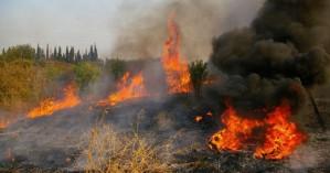 Πυρκαγιά σε περιοχή του Αμαρίου