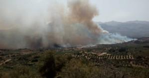 Χανιά: Ανεξέλεγκτη πυρκαγιά στον Άγιο Φανούριο (βίντεο + φωτο)