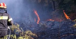 Μεγάλο πύρινο μέτωπο στο Ηράκλειο - Σηκώθηκε πυροσβεστικό ελικόπτερο