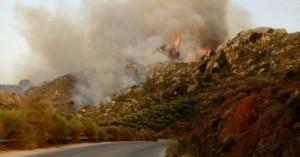 Νέα πυρκαγιά στα Χανιά - Πύρινο μέτωπο στο Κακόπετρο (φωτο)