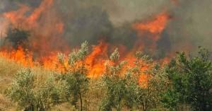 Υψηλός κίνδυνος πυρκαγιάς την Τετάρτη στην Κρήτη
