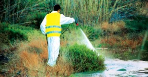 Το πρόγραμμα ψεκασμών για την καταπολέμηση των κουνουπιών στα Χανιά