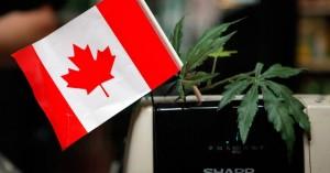 Καναδάς: Νόμιμη η κατοχή και χρήση κάνναβης για ψυχαγωγικούς σκοπούς