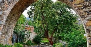 Μαγικές εικόνες από το καστανοχώρι των Χανίων (φωτο)