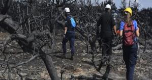 Σπίρτζης: Καμία καθυστέρηση στις πληρωμές των πυρόπληκτων