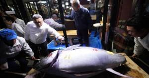 Το ψάρι του… 1,5 εκατ. ευρώ