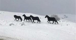 Eντυπωσιακή εικόνα από τα χιονισμένα ορεινά της Ηπείρου