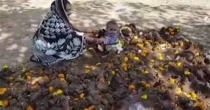 Γονείς βάζουν τα μωρά πάνω σε κόπρανα αγελάδων (βίντεο)