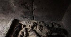 Αίγυπτος: Δεκάδες γάτες – μούμιες βρέθηκαν σε αρχαίους τάφους