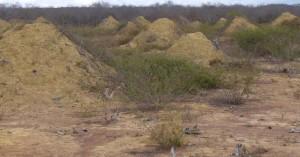 «Πυραμίδες» τερμιτών στη Βραζιλία 4.000 ετών φαίνονται από το διάστημα