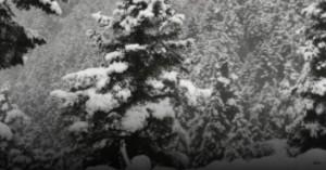 Έπεσε χιόνι στην ορεινή Ναυπακτία