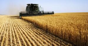 ΟΠΕΚΕΠΕ: Πληρωμές σε 639 δικαιούχους αγρότες
