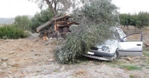 Άγιο είχε 24χρονος που καρφώθηκε με ΙΧ σε δέντρο