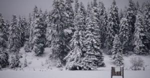 Χειμωνιάτικο σκηνικό με χιόνια, βροχές και πτώση θερμοκρασίας