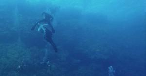 Η σοκαριστική στιγμή που καρχαρίας δαγκώνει το πόδι τουρίστα