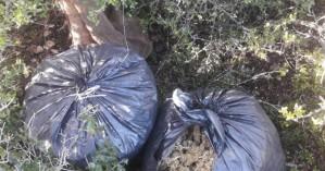 «Ορφανές» σακούλες με δέκα κιλά χασίς στην Αρκαδία