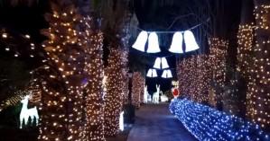 Σπίτι στη Χίο στολίστηκε με 177.000 φωτάκια για τα Χριστούγεννα (βίντεο)
