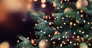 Φωταγώγηση του χριστουγεννιάτικου δέντρου στην Ευαγγελίστρια από το Κύτταρο Χαλέπας