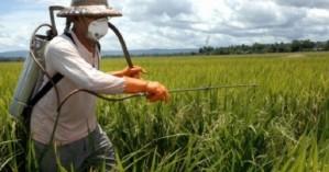 Εξετάσεις για πιστοποιητικό ορθολογικής χρήσης  γεωργικών φαρμάκων