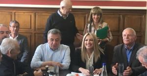 Φώφη Γεννηματά: Όλες οι αρμοδιότητες του ΒΟΑΚ να περάσουν στην Περιφέρεια Κρήτης