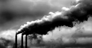 «Αν δεν μειωθούν οι εκπομπές CO2 θα χαθεί το 17% των θαλάσσιων ζώων μέχρι το 2100»