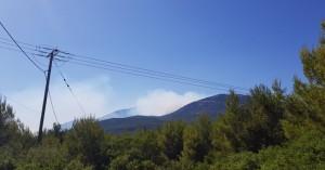 Φωτιά στον Κιθαιρώνα - Δύσκολη η επιχείρηση κατάσβεσης